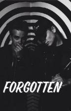 Forgotten by Maynardsugglet