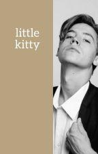 Little kitty | ChanBaek by czanbek