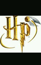 Harry Potter RP by Poland_Hetalia