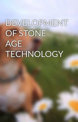 DEVELOPMENT OF STONE AGE TECHNOLOGY