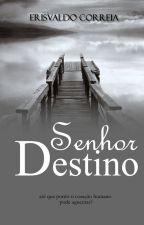 Senhor Destino (Degustação) by erisvaldo_correia