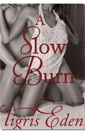 Un Fuego Lento (A Slow Burn) by TigrisEden
