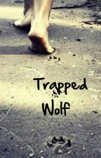 Trapped Wolf by xxmAnIaCxxReAdErxx