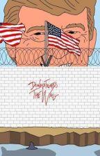 El muro de TRUMP (HUMOR) by Anto_Gillian