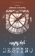 Cosas Del Destino © | #SA2018 by _phandows_