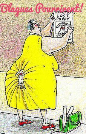 Mort de rires - Page 9 89684718-288-k780249