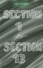Section 1 - Section 13 by Heart_Trixx
