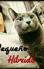 Mi Pequeño Híbrido{ MyungYeol}  by CatSooDerAsS