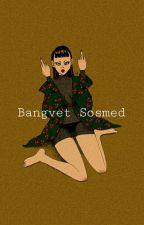 BangVelvet - Sosmed by chittae