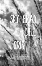 Sky Gray (Cielo Gris) by BooksFall