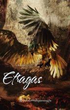Etragas by abdurrahmanozaysin