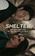 Shelter   Bucky Barnes Fanfiction by Nusieka