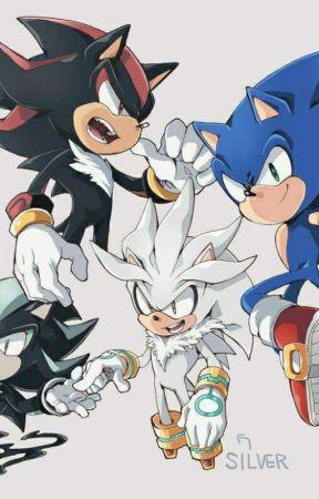 Sonic Boys X reader - Shadow Boom x Reader - Wattpad