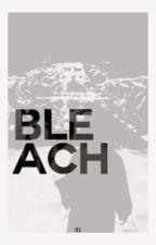 Bleach ᴿᴵᴰᴰᴸᴱ ᴱᴿᴬ by -renaissance