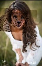 Cheetah alpha by haleyhobbstgddv