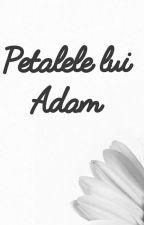 Petalele lui Adam by DariusLauran