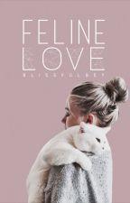 Feline Love by beylaterals