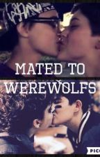 Mated to Werewolfs by okay_is_my_life