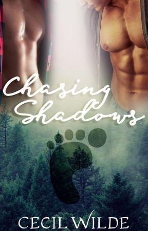 Chasing Shadows by softestpunk