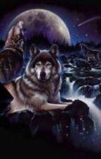 Lone Wolf Ranch (lgbt) (boyxboy) (mpreg) by Blu_Butterfli