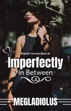 Perfect Haters Book 3: Imperfectly In Between by megladiolus