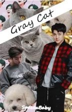 Gray Cat | HunHan by SpacexBaby