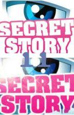 secret story 11 by mademoisellepop