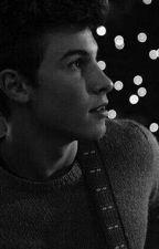 Ο διάσημος Shawn Mendes  by sophietsoukala