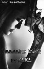 Assasina Inimii Mele by RalukaMihaela7