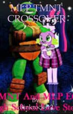 MLP EG TMNT crossover by Pinkrocks12
