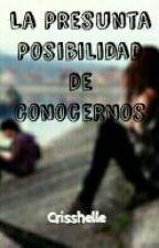 La Presunta Posibilidad de Conocernos by Crisshelle