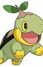Pokémoní Dobrodružství by KubaJatel