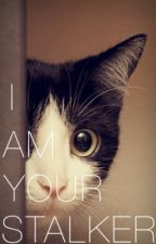 I Am Your Stalker by blackwhite_butterfly