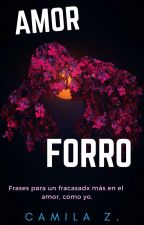 Amor Forro by DaisiesLovers