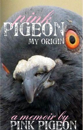 Pink Pigeon: My Origin by pink_pigeon