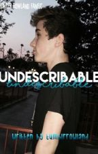 Undescribable (part two of Unforgettable) by tumblrrowland