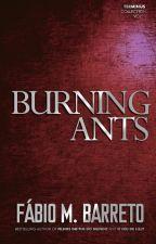 Burning Ants by FabioMBarreto
