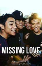 missing love  by _alina_ha