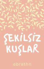 ŞEKİLSİZ KUŞLAR by ebrathn