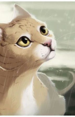 Warrior Cats- Birchpaw's Darkness -Book 1 by That_one_fangirl8
