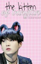 the kitten of bangtan -suga x bts- by Satanister