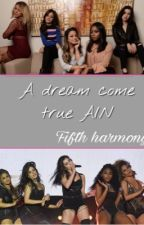 A dream come true Y/N by fifthxharmonyyx