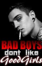 Bad Boys Don't Like Good Girls by horrorcore