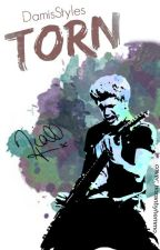 Torn. -Niall H. by DamisStyles