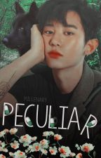 Peculiar • || ChanBaek || by MillenAry