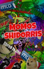 Momos Shidorris by hidratedanna