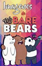 Imágenes de We Bare Bears by RollalPapa