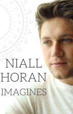 Niall Horan Imagines by divya_d