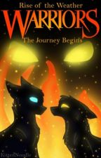 Warriors : Rise of the Weather [1] : The First Journey by kittennoodle