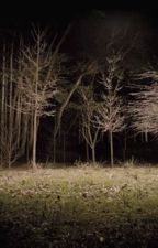 Teen Wolf ______ Brook by Magna19